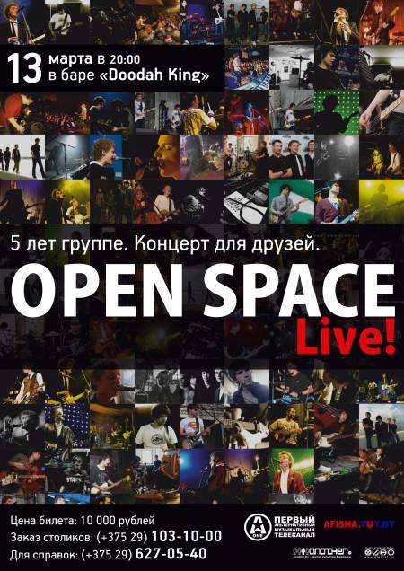 13 марта 2011 — «Doodah King», Минск