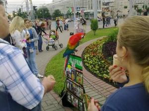 По улицам Витебска довольно интересно было просто гулять